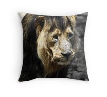 Ashok the Asiatic Lion Throw Pillow