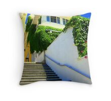 Keeper of the Gate II Throw Pillow