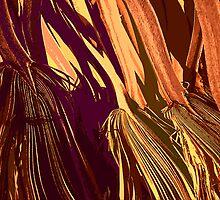 'Badlands Palm' by DLUhlinger