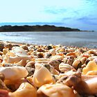 Hearsons Cove - Pilbara by Caroline Scott