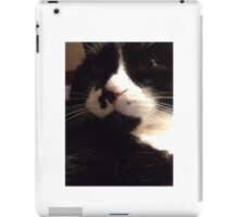 The Purr Starts Here! iPad Case/Skin