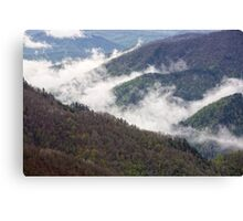 Mountains covered with forests Canvas Print