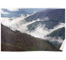 Mountains covered with forests Poster