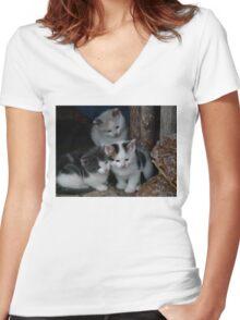 3 Little Kittens Women's Fitted V-Neck T-Shirt
