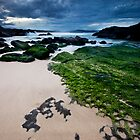 Green Seas by Raquel O'Neill