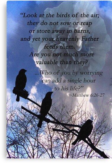 Matthew 6:26-27 by Terri Chandler