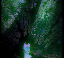 Whisper Tree by Tania Rose