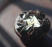 Starbucks Chocolate Muffin by snittel