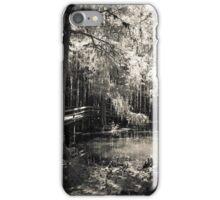 Walking Path at Swan Lake iPhone Case/Skin