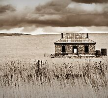 Rustic Ruins by Karyn Knight