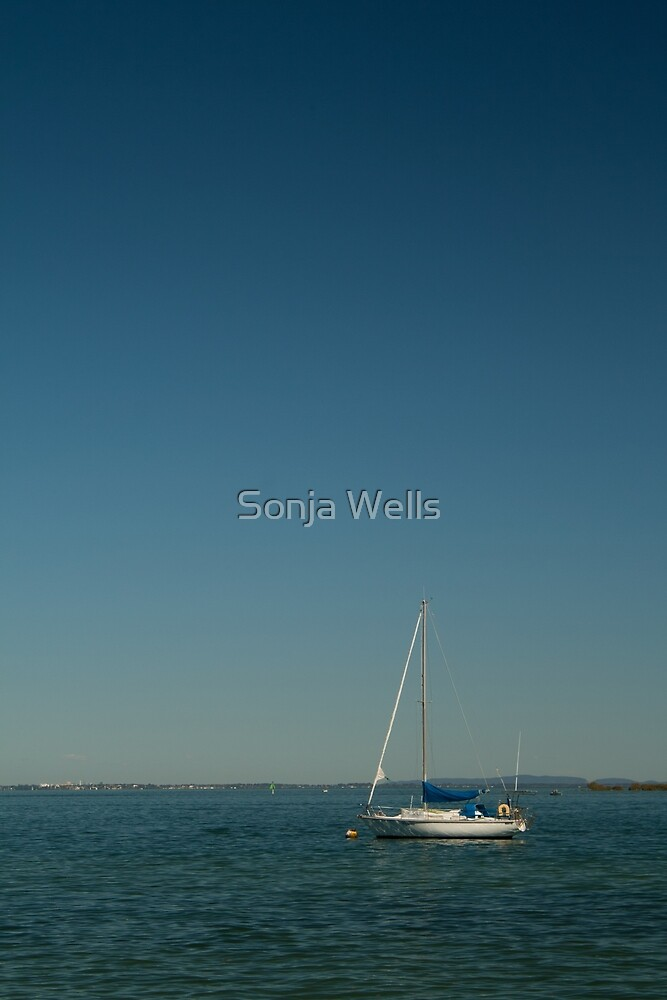 Anchored by Sonja Wells