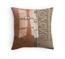 Door (and window) Throw Pillow