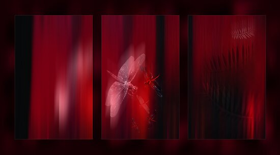 Illusion Triptych by Wendy  Slee