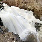 Gibbon Falls - Yellowstone - Close Up by Stephen Beattie