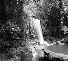 Curtis Falls, Queensland by BBCsImagery