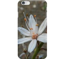 Bud and Bloom iPhone Case/Skin