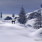 Winter by lady975