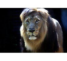 King Ashok! Photographic Print