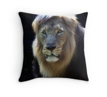 King Ashok! Throw Pillow