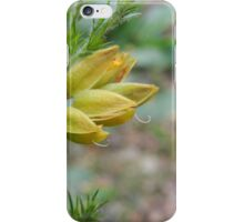 Yellow Flower Buds Sticking Their Tongue Out iPhone Case/Skin