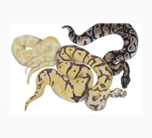 Ball Pythons Pencil Drawing Kids Clothes