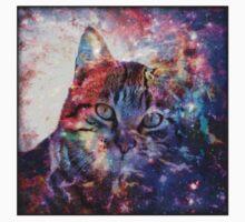 SpaceCat by Tr0y