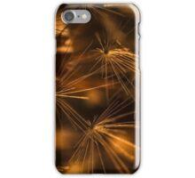 Dendelion 2 iPhone Case/Skin