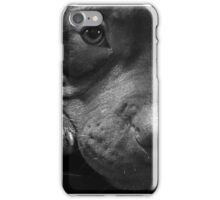 Bully Puppy iPhone Case/Skin