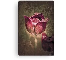 Mother's Day Tulip Canvas Print