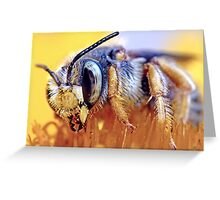 Pollen Pit Stop ! Greeting Card