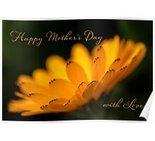 Calendula aglow - Mother's Day Poster