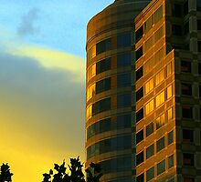 Sunset in Sacramento by Nancy Carman