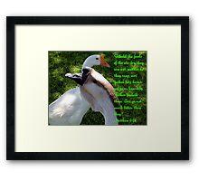 Matthew 6:26 Framed Print