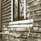 Days Gone By by Trish Woodford