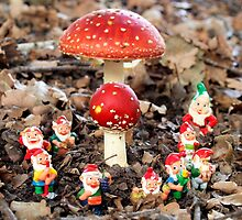 Gnomes party in the Fly Agaric Forest. by Bev Pascoe