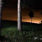 landscape before midnight 4 by Andraž Jenkole