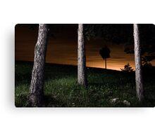 landscape before midnight 4 Canvas Print