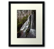 Beauty in many threads Framed Print