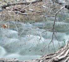 Creek In Zion Sticker