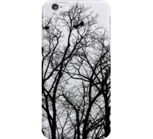 The higher you fly. iPhone Case/Skin
