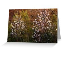 Spring twins Greeting Card