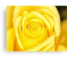 Mothers day(Yel) Canvas Print