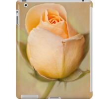 Just Peachy iPad Case/Skin