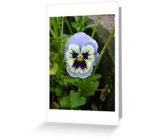 That's One Grumpy Flower! Greeting Card
