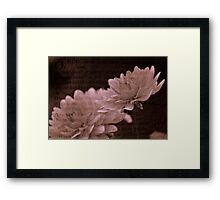 Sonnet and the Flowers Framed Print