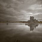 Dunguaire Castle by vwphotography