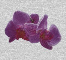 Plasticized orchid by Luís Lajas