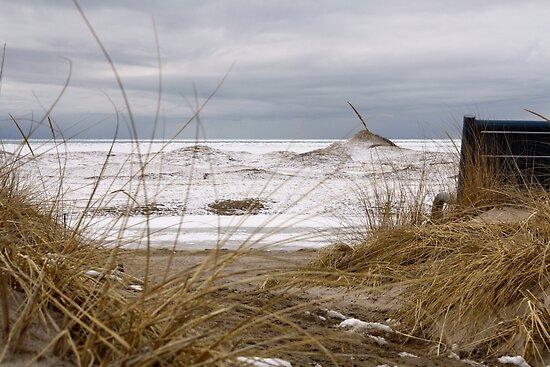 Frozen Beach by Steve Small