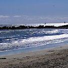 Venice Beach by Kerplunk409