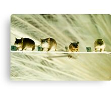 The audience Canvas Print